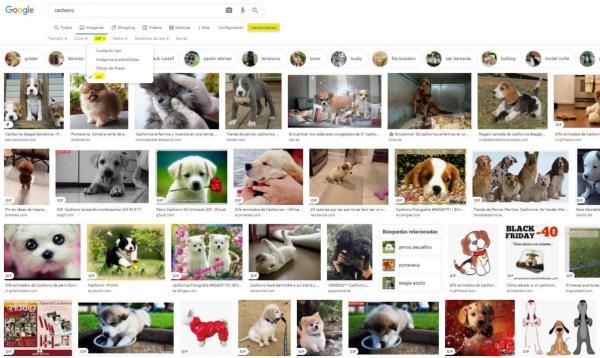 Cómo descargar un GIF - Cómo guardar GIFs de Google