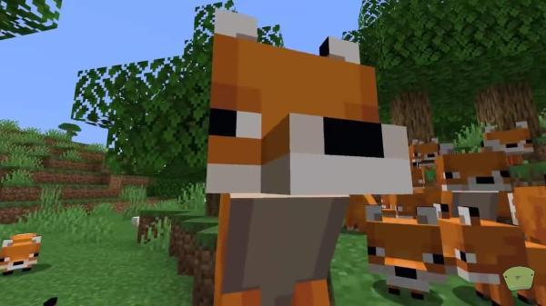 Cómo domesticar a un zorro en Minecraft - Consejos al domesticar zorros